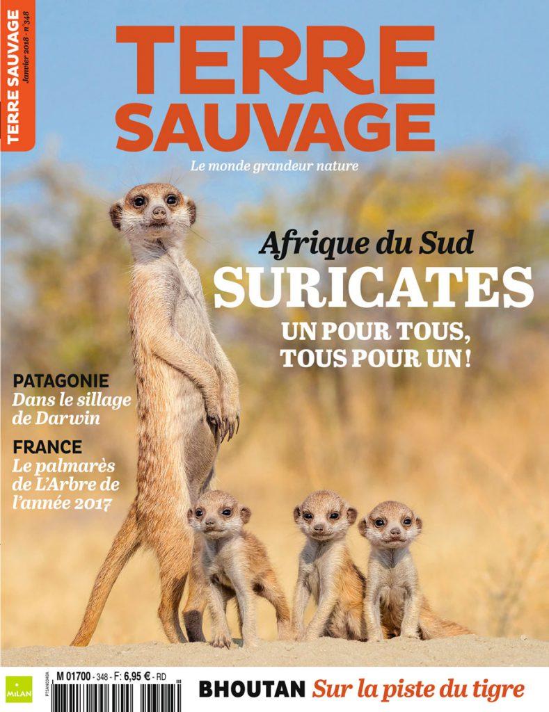 terre sauvage la revue